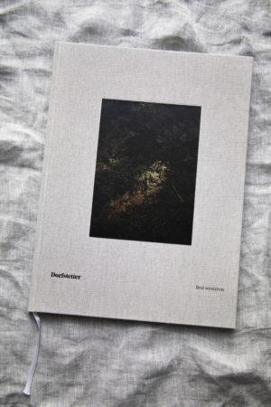 Dorfstetter Buch 1