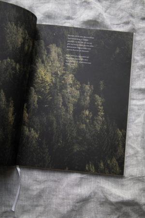Dorfstetter Buch 14