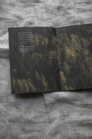 Dorfstetter Buch 9
