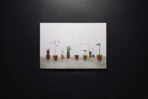 Herbarium 003b