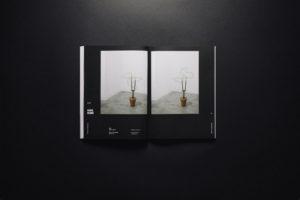 Herbarium 011