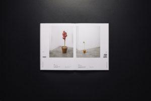 Herbarium 015
