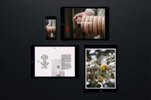 Riebenbauer Design_Buchberger_Branding_13