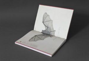 Riebenbauer Design_Wissenschaftliches Kabinett_Naturselbstdrucke_06