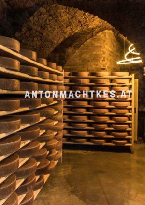 Riebenbauer_Design_Anton_macht_Kes_Keller_Interior_3b